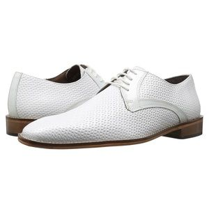 Stacy Adams Men's Rico-Plain Toe Oxford 13